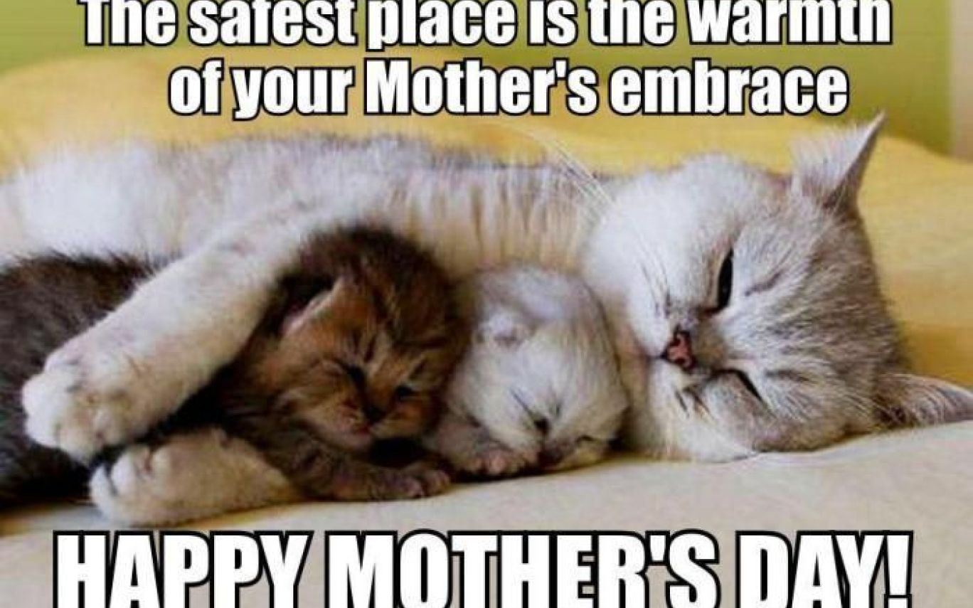 Image result for Mothers day memes